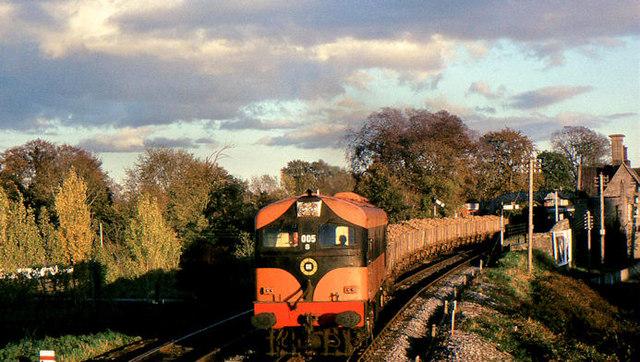 Beet train at Cahir