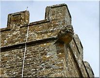 ST5308 : Gargoyle, St Mary's Church by Maigheach-gheal