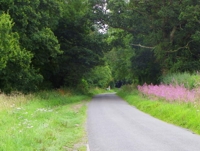 Minor road, Rodbourne