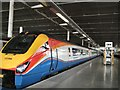 TQ2983 : Train in St Pancras station by Paul Gillett