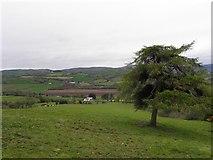 H4180 : Gortinagin Townland by Kenneth  Allen
