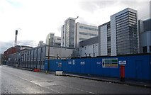 SJ8596 : Central Manchester University Hospitals by N Chadwick