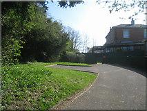 SU6351 : Private drive off Winchester Road by Sandy B