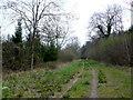 ST5209 : Pen Wood Traill by Nigel Mykura