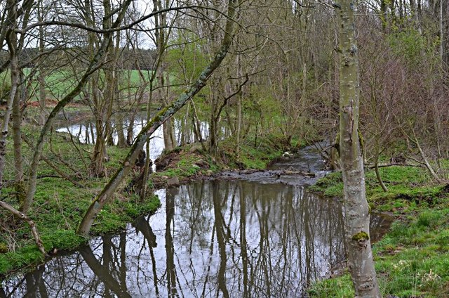 Ponds on the Dunino Burn