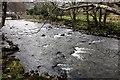 SH5947 : Afon Glaslyn at Beddgelert by Jeff Buck