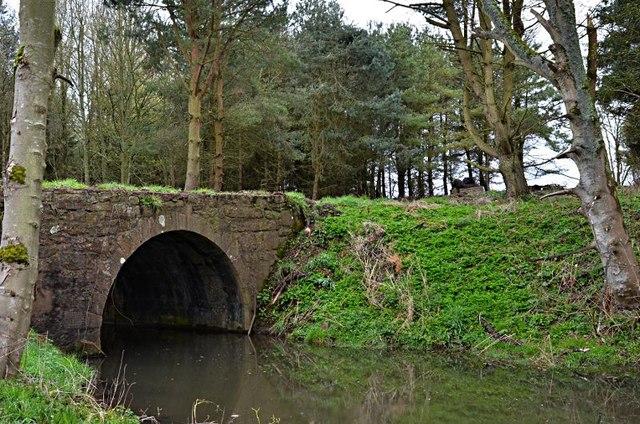 Bridge over the Dunino Burn