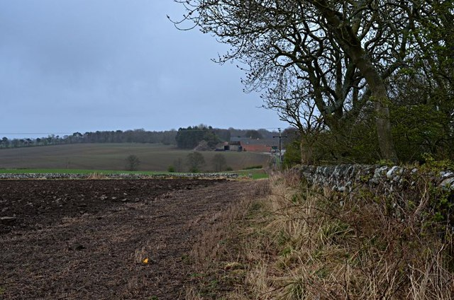 Chesters farm