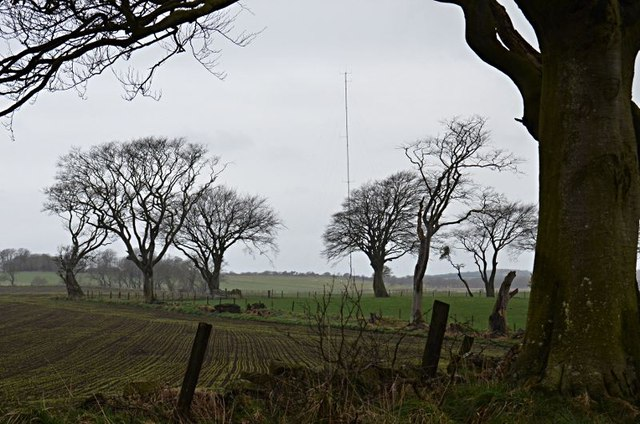 SW from Callyons wood