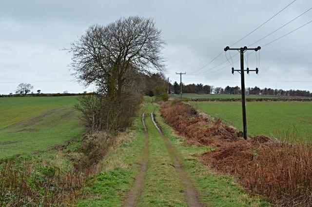 Farm track, Chesters