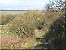 NY6565 : Path by Greenhead Cleugh by Mike Quinn