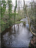 SK3089 : River Loxley adjacent to Olive mill pond by Rudi Winter