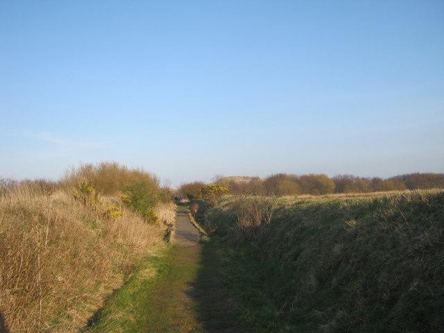 Public footpath from Widdrington to Druridge Links