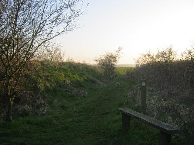 Seat alongside public footpath from Druridge Links to Widdrington