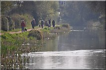 SS9712 : Tiverton : Grand Western Canal by Lewis Clarke