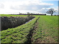 TA1344 : Field Edge Footpath  along  Stream  Dike by Martin Dawes