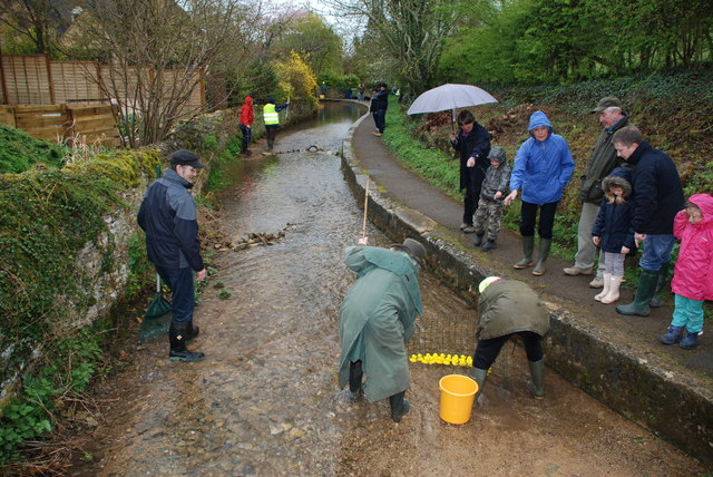 Duck Racing at Blockley Ford
