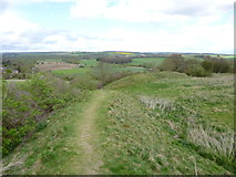 ST9102 : Spetisbury Rings by Mike Faherty