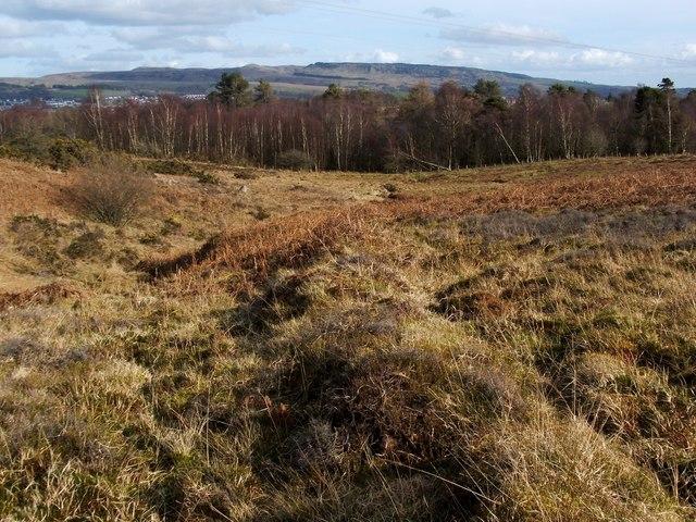 Old boundary on Carman Muir