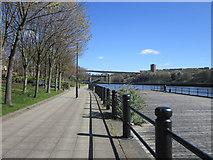 NZ2462 : Walking along the River Tyne by Ian S