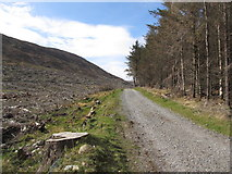 J3629 : Upper forest track in Donard Forest by Eric Jones