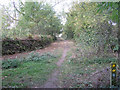 SP4576 : Footpath and laid hedge north from Smithy Lane by Robin Stott