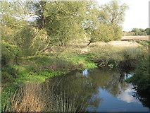 SP4477 : River Avon upstream from King's Newnham Road by Robin Stott