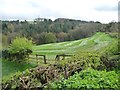 NZ1757 : Mown field above Leapmill Burn by Christine Johnstone