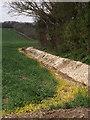 SU6949 : Downland North of Upton Grey by Colin Smith