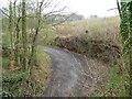 NZ1657 : The track to Low Friarside Farm by Christine Johnstone