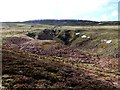 NT9220 : Stream gullies below Cheviot near Harthope Linn by Andrew Curtis