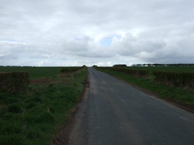 Minor road heading north towards Rainton
