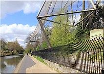 TQ2783 : Snowdon aviary, Regent's Canal by David P Howard