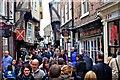 SE6051 : The Shambles, York by Paul Buckingham