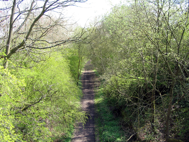 Kenilworth Greenway from Cromwell Lane bridge