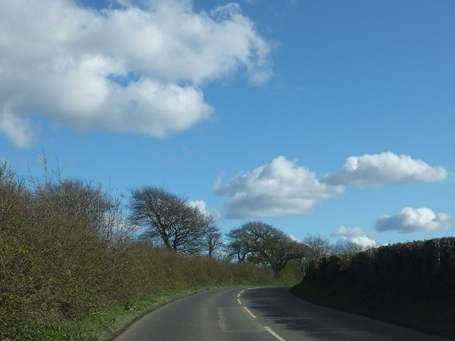 Road south of Gulworthy