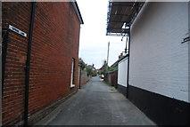 TR1859 : Spring Lane by N Chadwick