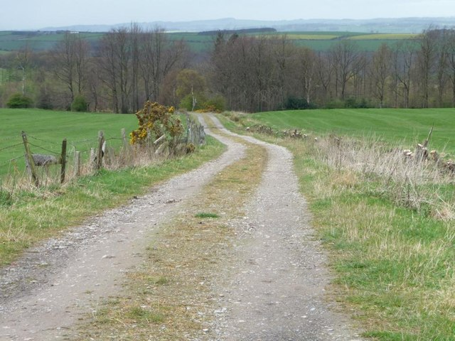 The track to Clinty Wood