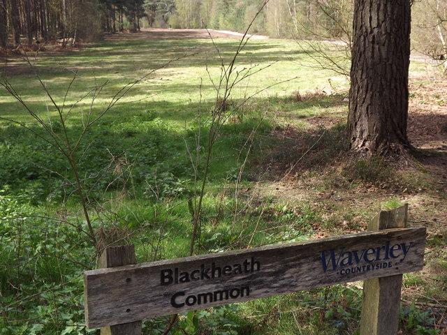 Blackheath Common