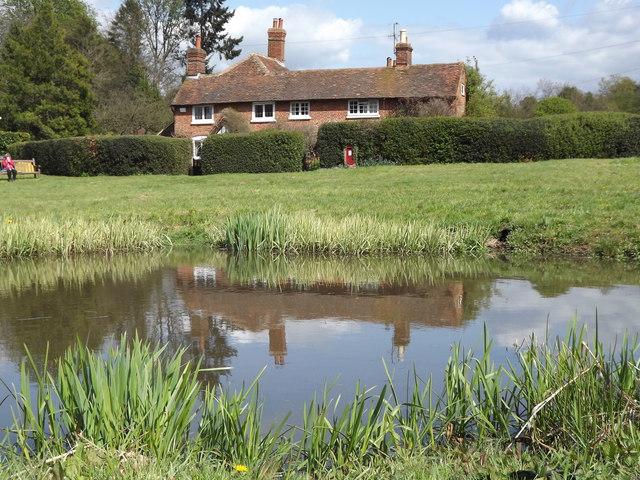 Farley Green Pond