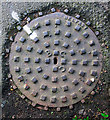 J5181 : Manhole cover, Bangor by Rossographer