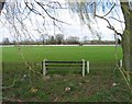 SK5914 : Sileby Town Cricket Club ground by Andrew Tatlow