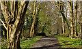 J4777 : Clandeboye Way, Clandeboye, Bangor by Albert Bridge