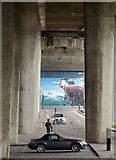 NS5865 : Under the M8 Kingston Bridge by Thomas Nugent