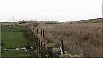 NT1890 : Wetland, Mossmorran by Richard Webb