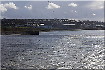 NJ9505 : The mouth of the Dee, Aberdeen by Mike Pennington
