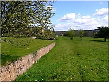 SS9700 : View east along the ha-ha at Killerton House by Shazz