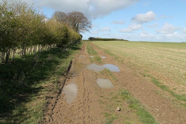 A muddy Public Bridleway to Sutterby Holt