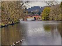 NN6207 : Callander Bridge, River Teith by David Dixon