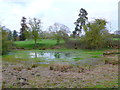 SP2369 : Pond at Haseley Green by Nigel Mykura